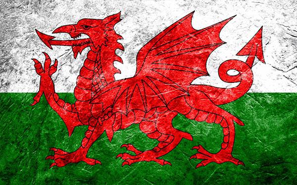 Валлийский (уэльский). ТОП 25 по Версии Eks-Libris